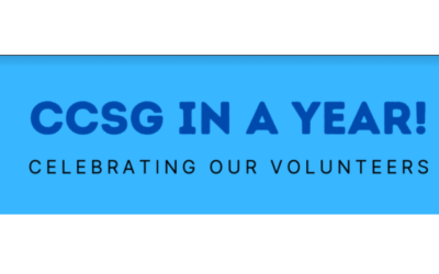 CCSG Supporting Chorleywood – One Year On
