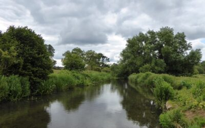River Chess and Sewage