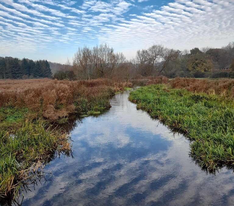 River Chess pollution discharges continue