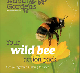 Bees need your help