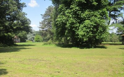 Update from Friends of Chorleywood House Estate
